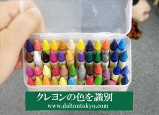 クレヨンの色を識別、色盲色弱の色覚検査 色覚テスト 色覚異常