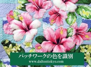 パッチワークの花の色、色盲色弱の色覚検査 色覚テスト 色覚異常