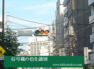 道路の信号機を識別、色盲色弱の色覚検査 色覚テスト 色覚異常